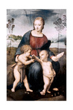 Madonna Del Cardellino, 1507 Giclee Print by  Raphael