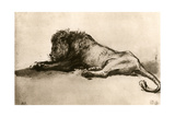 Study of a Lion, 1913 Giclee Print by  Rembrandt van Rijn