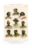 Ethnology, Races of Man, 1800-1900 Giclee Print by R Anderson