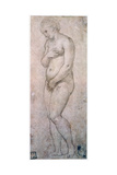 Study of Venus, C1500-1520 Reproduction procédé giclée par  Raphael