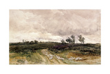 Moorland Scene, 1878 Giclee Print by Thomas Collier