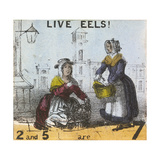 Live Eels!, Cries of London, C1840 Giclee Print by TH Jones