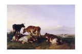 Landscape and Cattle, 1868 Giclee Print by Thomas Sidney Cooper
