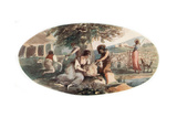 Sheep Shearing Giclee Print by William Hamilton
