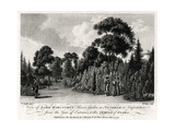View of Lord Harcourt's Flower Garden at Nuneham in Oxfordshire, 1777 Giclee Print by William Watts