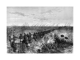 Samuel Baker's Boat Hauled Through River Grass, 1864 Giclee Print