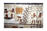 Wall Painting from the Tomb of the Scribe Menna, Thebes, Ancient Egyptian, 18th Dynasty Giclee Print