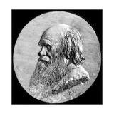 Charles Darwin, 1882 Giclee Print by Alphonse Legros