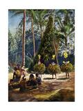 The Duk Duk Society, Bismarck Archipelago, Papua New Guinea, 1920 Giclee Print