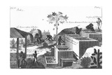 Producing Indigo Dye with Slave Labour: West Indies or Central America, 1725 Giclee Print