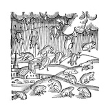 Rain of Frogs Recorded in 1355 Giclee Print
