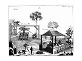Slave Labour on a Sugar Plantation in the West Indies, 1725 Giclee Print