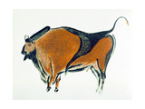 Bison, Copy of a Palaeolithic Cave Painting at Altamira, Northern Spain, 1913 Giclee Print
