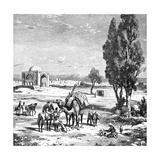 Tehran, Iran, 1895 Giclee Print