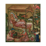 Birth of Christ, C1350 Giclee Print