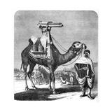 Gatling Rapid Fire Gun, 1862 Giclee Print