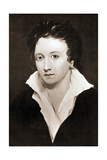 Percy Bysshe Shelley, English Romantic Poet, 19th Century Giclee Print