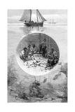 Pearl Fishery, Torres Strait, Australia, 1886 Giclee Print