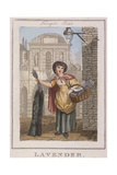 Lavender, Cries of London, 1804 Giclee Print by William Marshall Craig