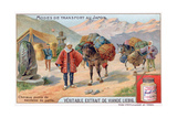 Modes of Transport in Japan, 19th Century Giclee Print