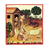 The Production of Cheese. a Miniature from Tacuinum Sanitatis, Second Half of 14th C Giclee Print