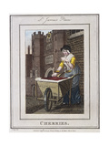 Cherries, Cries of London, 1804 Giclee Print by William Marshall Craig