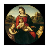 Mary with the Child, John the Baptist and a Holy Boy (Madonna Terranuov), C. 1505 Giclee Print by  Raphael