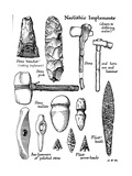 Neolithic Implements of Stone, Flint and Horn, C1890 Giclee Print