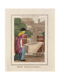New Potatoes, Cries of London, 1804 Giclee Print by William Marshall Craig