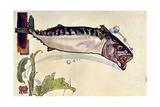 Mackerel, 1900 Giclee Print by Edward Detmold