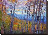 Utah Aspens Stretched Canvas Print by Erin Hanson