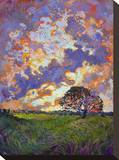 Sky Burst Stretched Canvas Print by Erin Hanson