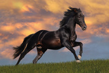 Bob Langrish: Fantasy Horse Posters