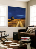 The Way Home Wall Mural by Tandi Venter