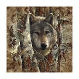Wolf Spirit Posters af Collin Bogle