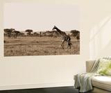 Serengeti Horizons II Wall Mural by Boyce Watt