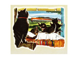 Here Comes Your Train, Chester Giclee Print by Charles Bracker