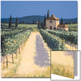 Vineyard Shadows Poster by David Short