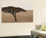 Serengeti Horizons I Wall Mural by Boyce Watt