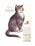 Chessie's Old Man Giclee Print by Guido Gruenwald