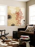 Coral Impressions II Wall Mural by Tandi Venter