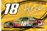 Kyle Busch One-Sided Flag with Car Flag