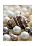 Sea Jewels II Metal Print by Boyce Watt