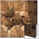 Leaf Patterns II Prints by Linda Thompson