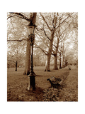 Restful Autumn I Metal Print by Boyce Watt