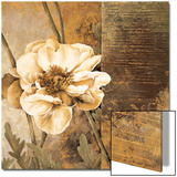 Rustic Garden I Posters by Linda Thompson