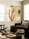 Coral Impressions I Wall Mural by Tandi Venter