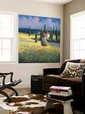 Tuscan Poppies I Wall Mural by David Short
