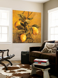 Lemon Branch Wall Mural by Linda Thompson
