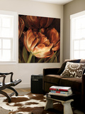 Color Harmony II Wall Mural by Linda Thompson